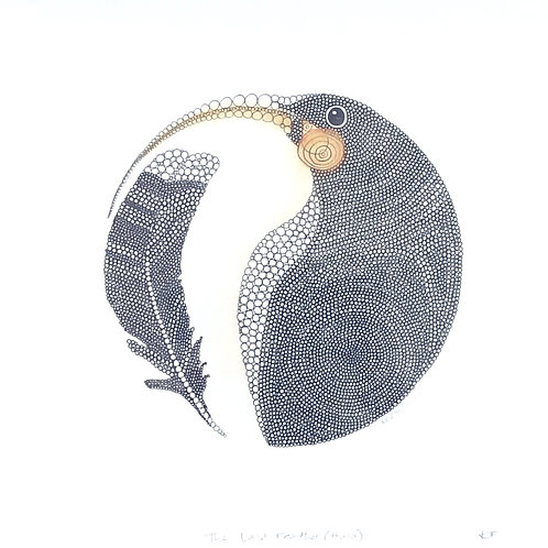 The last feather (Huia)