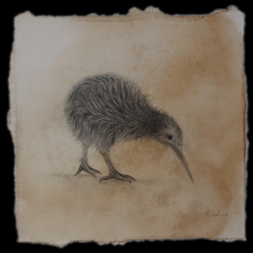 Our Treasure (New Zealand Kiwi) By Karen Rakin Neal
