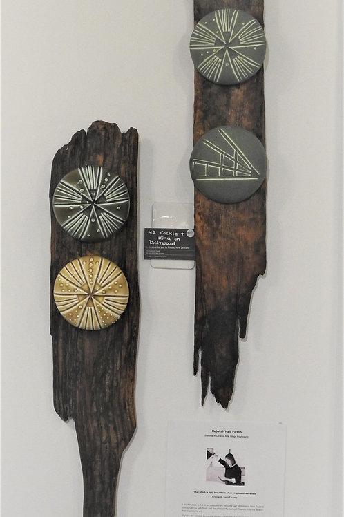 NZ Cockle / Kina on Driftwood - Rebekah Hall