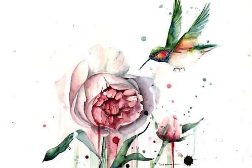 Hummingbird and Peonies By Mia Riddell