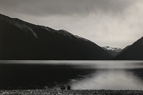 Morning Meeting (Lake Rotoriti)