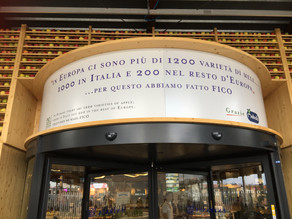 FICO - Eataly World, Italian Food and Wine Park Entertainment for adults and children