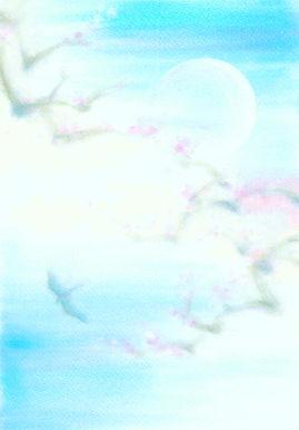 天空に咲く.jpg