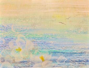 光りの海に捧ぐ.jpg