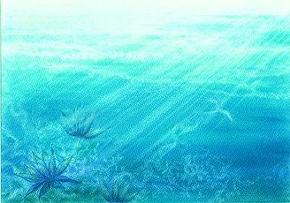 眠れる光の森.jpg