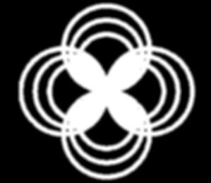 top_flying_logo_line.png