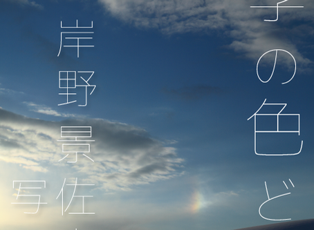 「四季の色どり」岸野景佐夫展