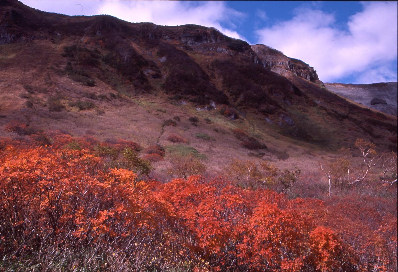 大雪高原の秋