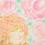 Thumbnail: オトメツバキの精