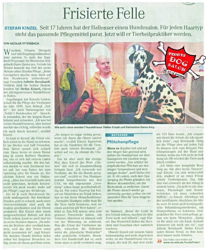 Jahr 2015 MZ Zeitung