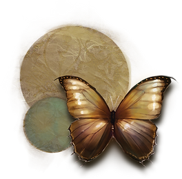 butterfly_nobg.png
