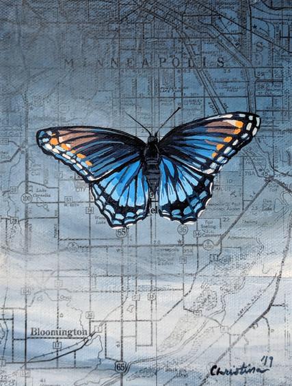 Minneapolis Swallowtail