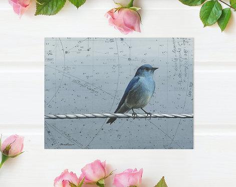 Signed Giclee Bluebird Print | 10'' x 8''