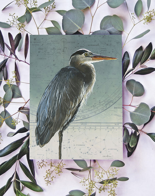 Signed Giclee Heron Print | 11'' x 14''