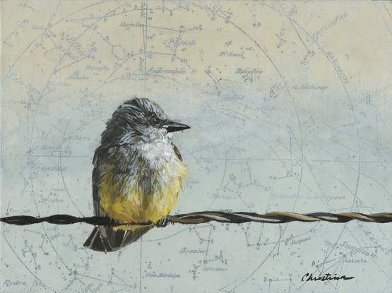 Ruffled Feathers #1
