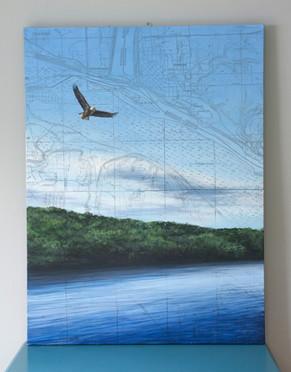 St. Croix Eagle