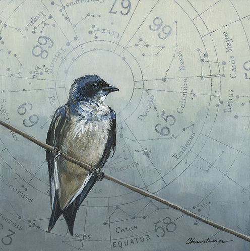 Perched Swallow #1 | 6'' x 6''