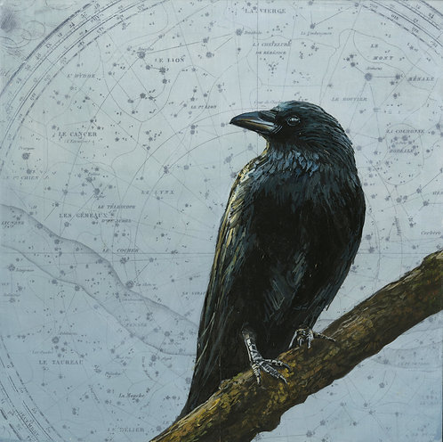 Celestial Crow #2 | 12'' x 12''