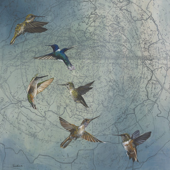 Hummingbird Soiree #2