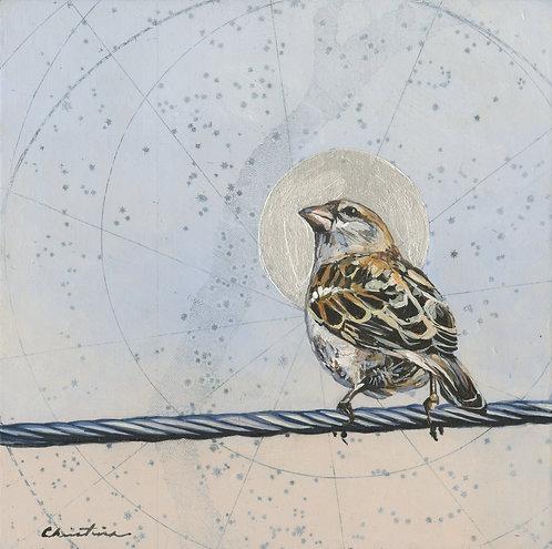 Illuminated Sparrow #2 | 8'' x 8''