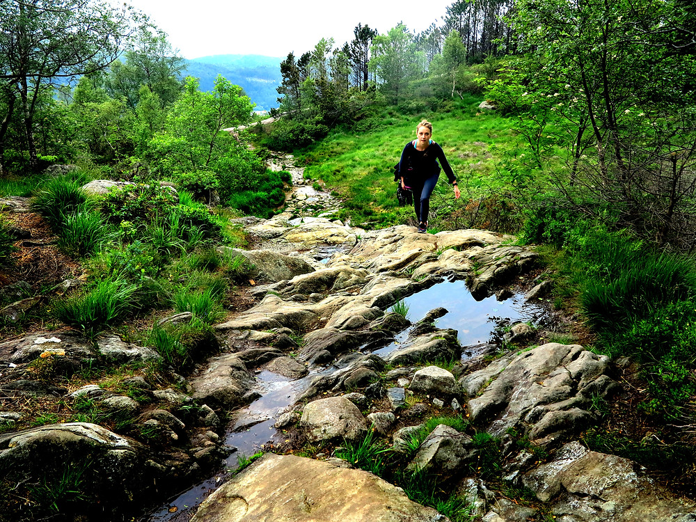 Bergen Norway nature hiking classical music horn travel