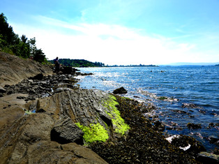 Hovedøya, Oslo, 2015