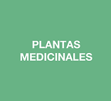 farmacia en donostia