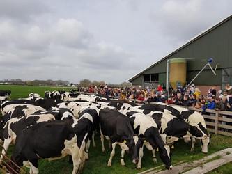 Breng een bezoek aan de lokale zuivelfabriek tijdens de Amstellanddag