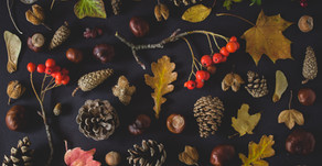 Autumn notes: how to stay in tune with the seasons - body and mind