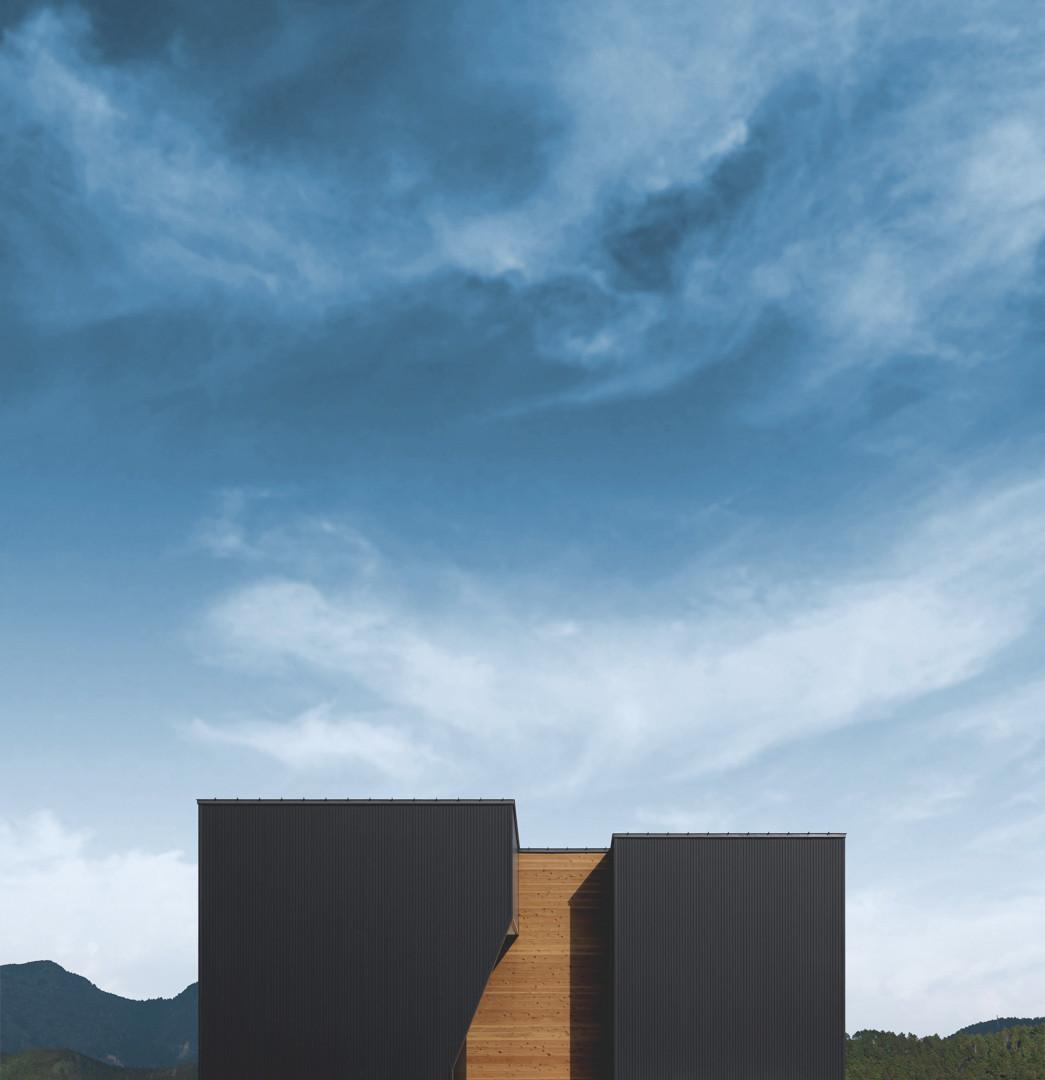 洗練されたシックなデザインの家