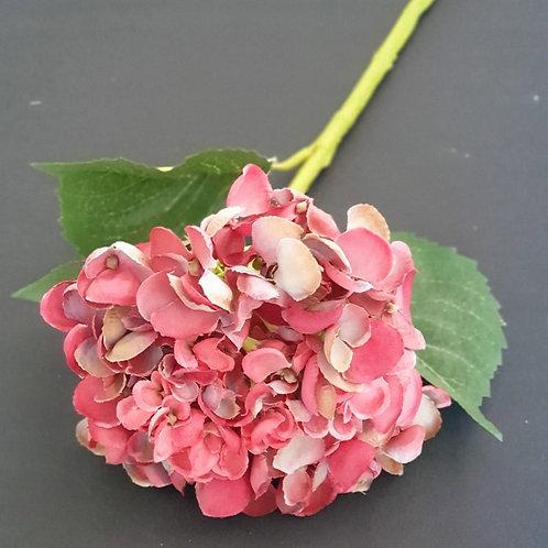 ענף אורטנזיה בודד-פרחי משי לעיצוב הבית