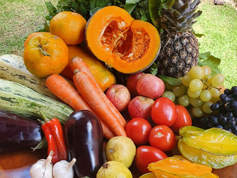 Ayurveda e Alimentação: Como nutrir o seu corpo no inverno?
