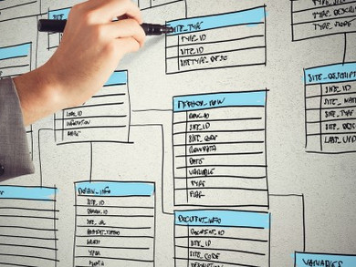 How to organize your business