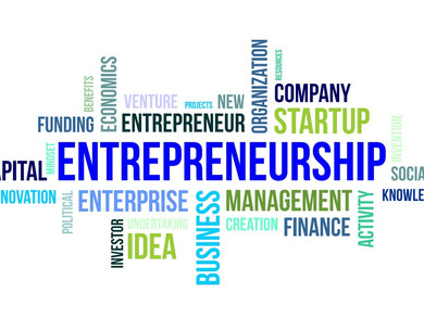 4 types of entrepreneurial businesses