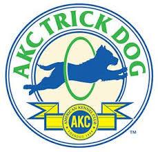 akc trick dog.jpeg