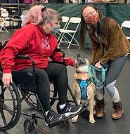 Therapy dog training_edited.jpg