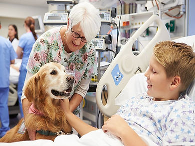 therapy_dog1022.jpg
