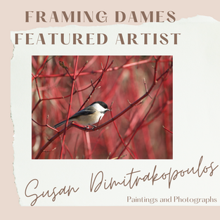 Featured Artist Susan Dimitrakopoulos