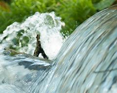 27_Rock Water_Quellwasser_acqua di fonte_Edward Bach_Blüten_Blüte_Pflanzen der Seele_Pflanze_Energie_Natur_Energia_Fiori di Bach_fiori_natura_rimedi floreali di Bach.png