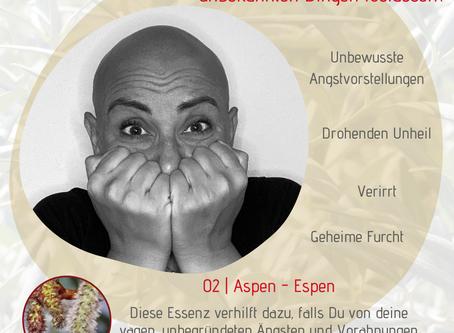 Thema ANGST | Bachblüte Aspen