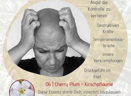 Thema Angst | Bachblüte Cherry Plum