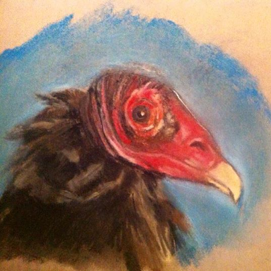 Facebook - National Bird Day! Lol : )_ed