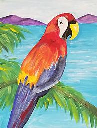 parrot-001.jpg