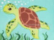 Turtle-001.jpg