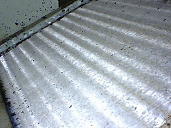 mold-removed.bmp