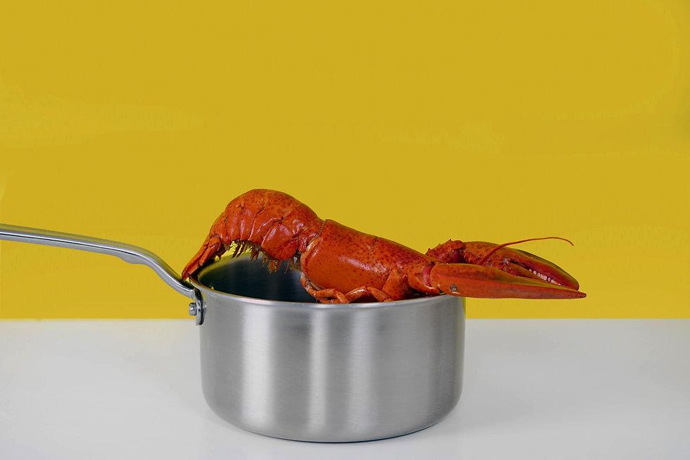 cooked%2520shrimp_edited_edited.jpg