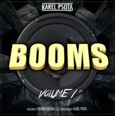 SourceAudio - Booms Vol 1 - v15.png