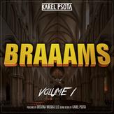 SourceAudio - Braaams Vol 1 - v03.png