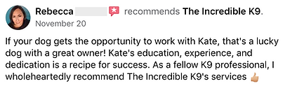 The Incredible K9 5-Star Review