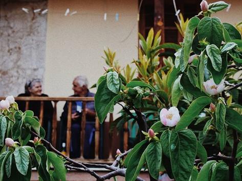 Living on a Greek island - The key to longevity by Eleni Zafeiratou